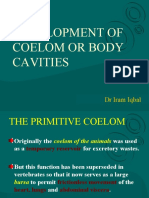 Coelom and Body Cavities - Copy