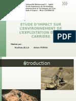 Etude d'Impact Sur l'Environnement de l'Exploitation d'Une Carrièree(2)
