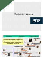 Evolución Humana (Arqueologia)