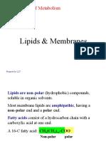 Lipids & Membranes