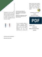 Triptico-1 (1).docx
