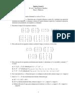 Tarea Algebra Lineal Matrices