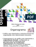 09-organograma-120628142240-phpapp02