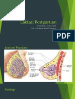 Laktasi Postpartum