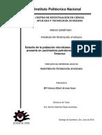 Tesis - Poblacion Microbiana