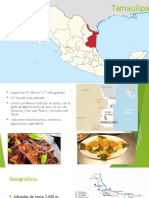 Tamaulipas introducción