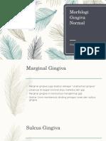 Morfologi Gingiva Normal