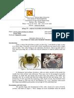 Exer 1 - crab