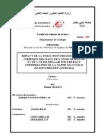 Impact de La Pollution Organique Et Chimique Des Eaux de l'Oued Seybouse Et de l'Oued Mellah Sur Les Eaux Souterraines de La Nappe Alluviale de Bouchegouf (Guelma)
