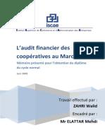 Audit financier des coopératives au Maroc - ABS Consulting.pdf