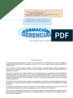Prog.formación Gerencial.doc.I 2.016