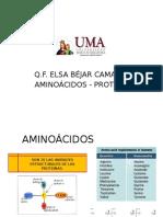CLASE 3 UMA (1) biquimica