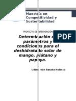 Determinación de Parámetros y Condiciones Para El Deshidratado Solar de Mango