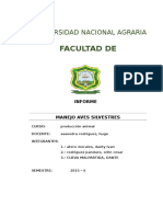 Informe de Produccion Animal