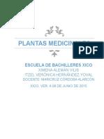 Plantas Medicinales en la Cd. de Xico, Veracruz.