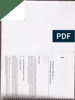 Cap1 Livro Souza&Diehl Custos