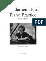 Fundementals of Piano Practice