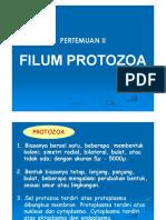 02-Protozoa.pdf