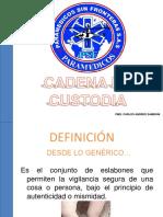 Cadena de Custodia Psf