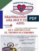 Rcp y Codigo Azul Psf 2015