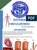 Sistema Circulatorio Psf