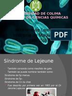 síndrome de Lejeune o síndrome de Maullido del gato (5p)