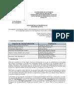 Guía Práctica Integrativa IV 01-2010