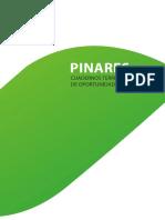 Oportunidades Negocio Pinares