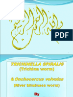 Trichinella Spiralis & Onchocerca.ppt111
