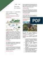 Guía de Medio Ambiente 7
