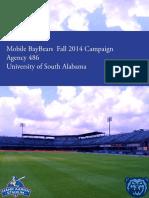 baybear 2014 agency book
