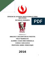 análisis y descripción de puesto /selección y desarrollo