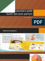 Perawatan Payudara Pada Bumil Dan Post Partum