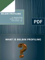 Belbin Profiling