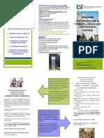Uvt_programe Postuniversitare Dse