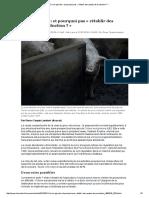 Crise Agricole_ Et Pourquoi Pas «Rétablir Des Quotas de Production_»