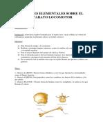Tema 2anatomiaev 3ESO Anatomia