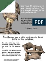 Skeleton AtlasAxis 041715