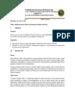 Informe 1 Nectar de Durasno
