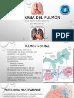 Anatomia Patologica - Pulmones