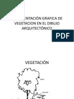Vegetació n