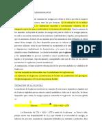 metabolismos de carbohidratos.pdf