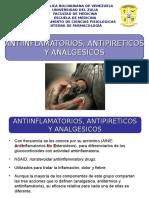 AINES Prof. Maria De Freitas