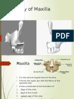 Anatomy of Maxilla