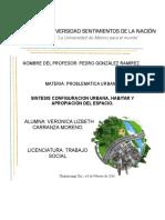 Sintesis Configuracion Urbana, Habitar y Apropiación Del Espacio.