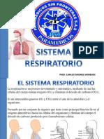 Sistema Respiratorio Psf