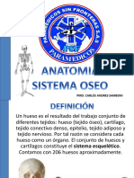 Sistema Oseo Psf