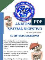 Sistema Digestivo Psf