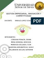 estructura del plan de negocios.doc