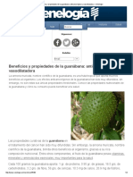 Beneficios y Propiedades de La Guanábana_ Anticancerígena y Vasodilatadora